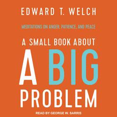 A Small Book about a Big Problem by Edward T. Welch audiobook
