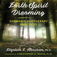 Earth Spirit Dreaming by Elizabeth E. Meacham audiobook